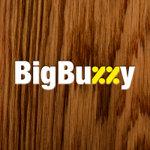 Big Buzzy