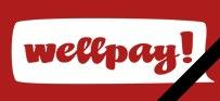Закрылась платежная система WellPay